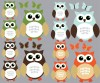 12 Reg Owls - Orange Brown- Owl Wall Decor
