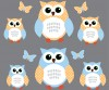 6 Reg Owls - Blue Green - Owl Wall Decals